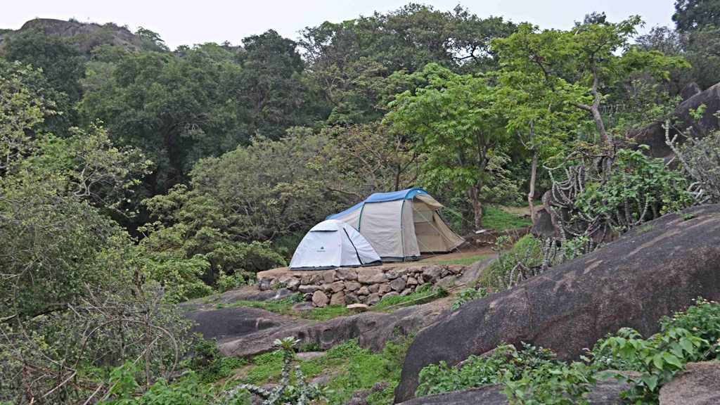 Camping and trekking in Mt Abu